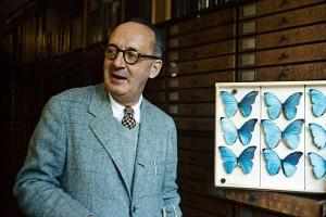 Набоков и бабочки